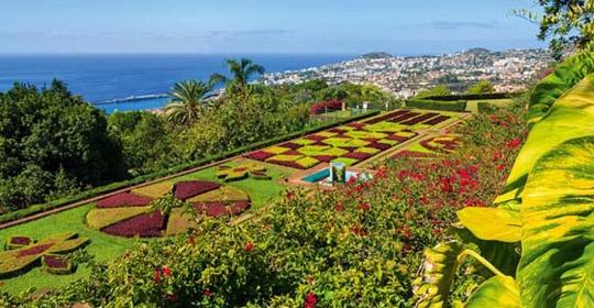 Au coeur de Madère - Logement en hôtel 3* à Funchal - Madère