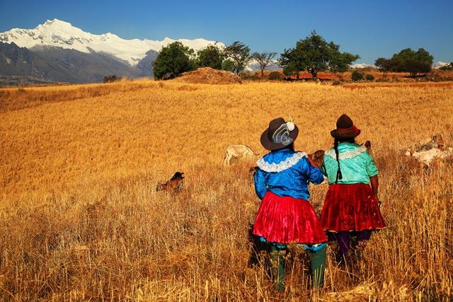 Pérou - Circuit Splendeurs du Pérou avec extension à Nazca