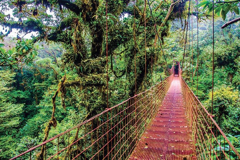 Costa Rica - Circuit Le Costa Rica, le Paradis Vert