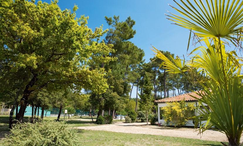 France - Atlantique Nord - La Palmyre Les Mathes - Club Belambra Les Mathes 3*