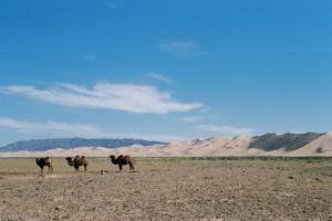 Mongolie - Circuit Mongolie Intimiste