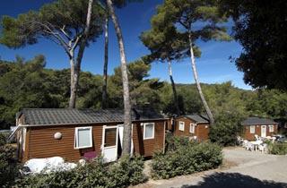 camping club la foret de janas seyne sur mer cote d 39 azur france avec voyages leclerc. Black Bedroom Furniture Sets. Home Design Ideas