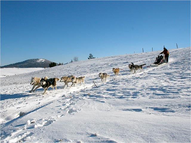 France - Auvergne - Super Besse - VVF Villages Super Besse
