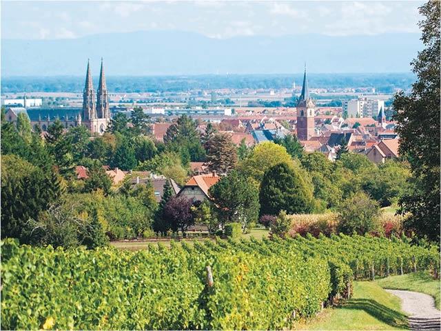 France - Alsace-Lorraine Grand Est - Obernai - VVF Villages Obernai